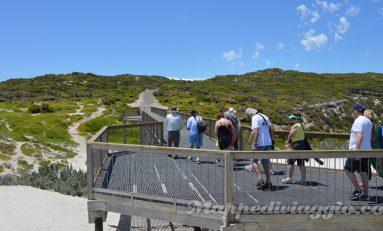 Australia parte 2: tour a Kangaroo Island (primo giorno)
