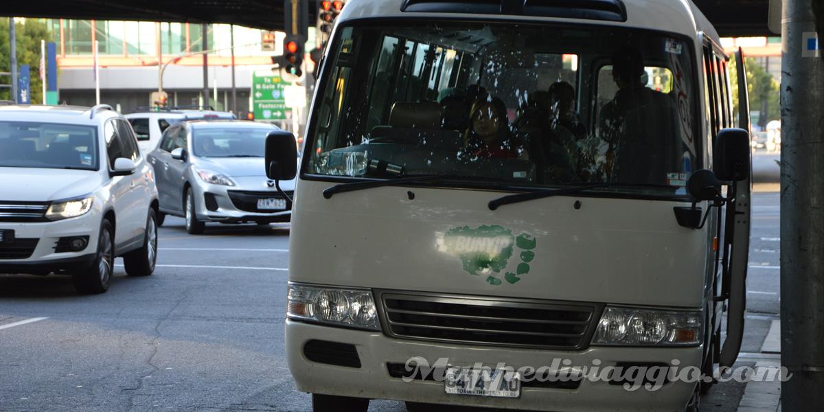 bunyip-tours-bus
