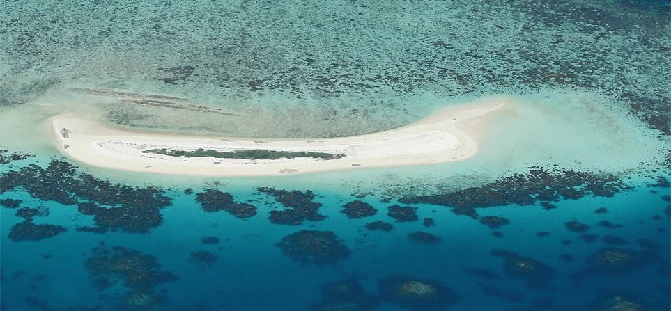 cairns-reef-michaelmas-cay