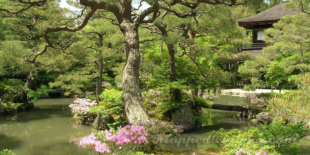 giardino-tempio-ginkakuji