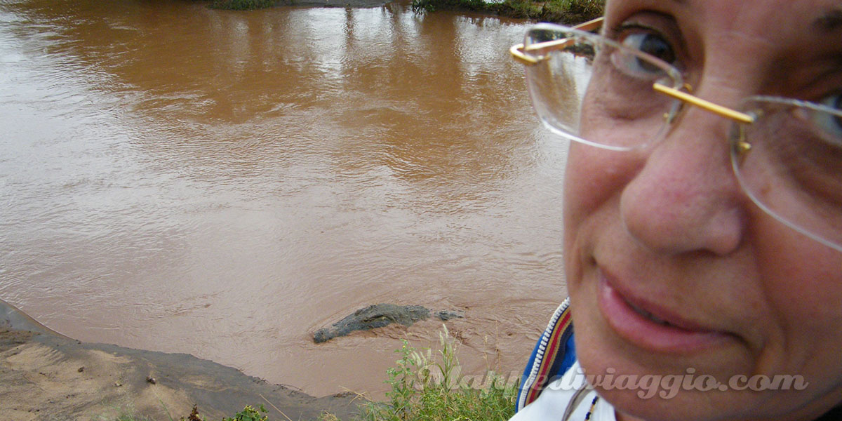 incontro-ravvicinato-coccodrillo