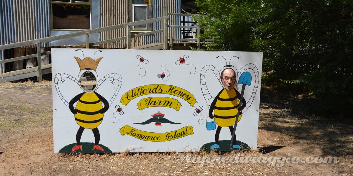 kangaroo-island-cliffords-honey-farm-fabbrica-miele