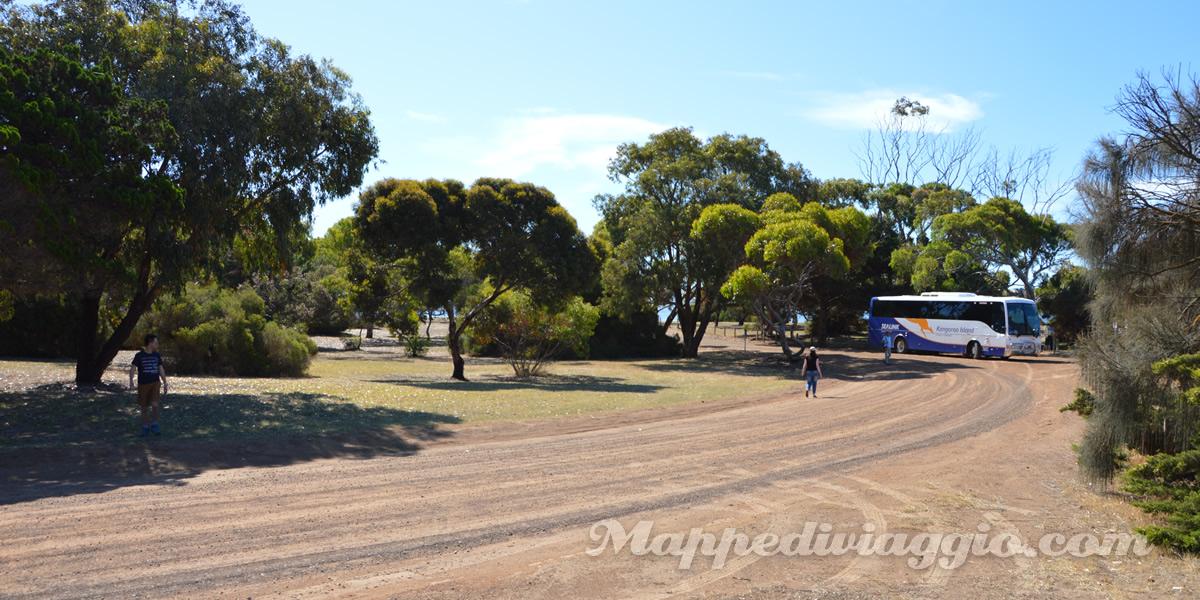 kangaroo-island-kingscote-reeves-point
