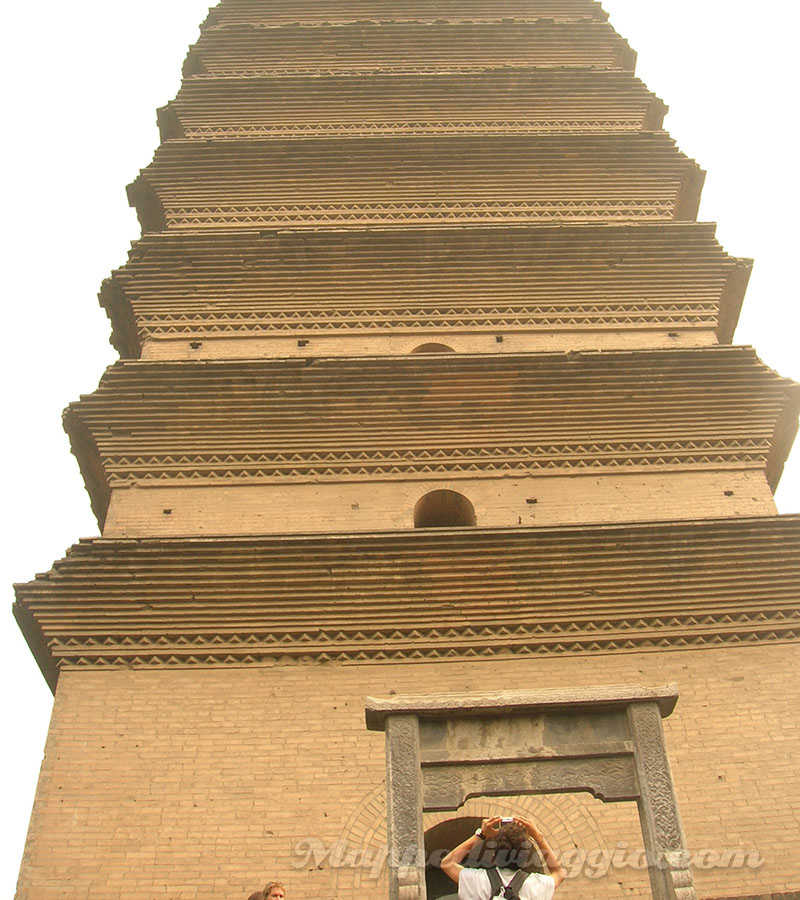 pagoda-oca-selvaggia