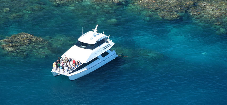 seastar-cruises-great-barrier-reef