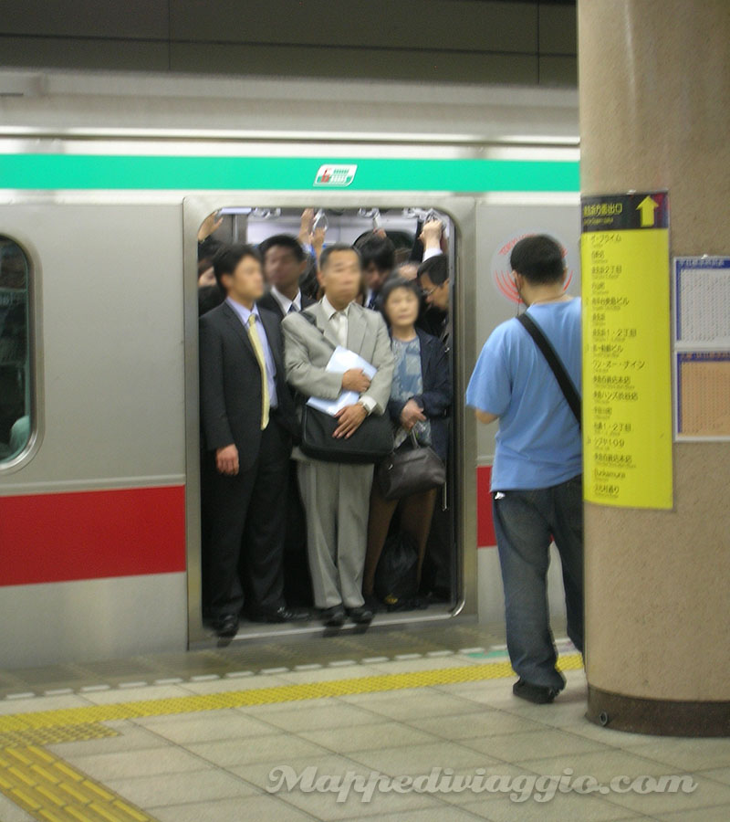 shibuya-metropolitana