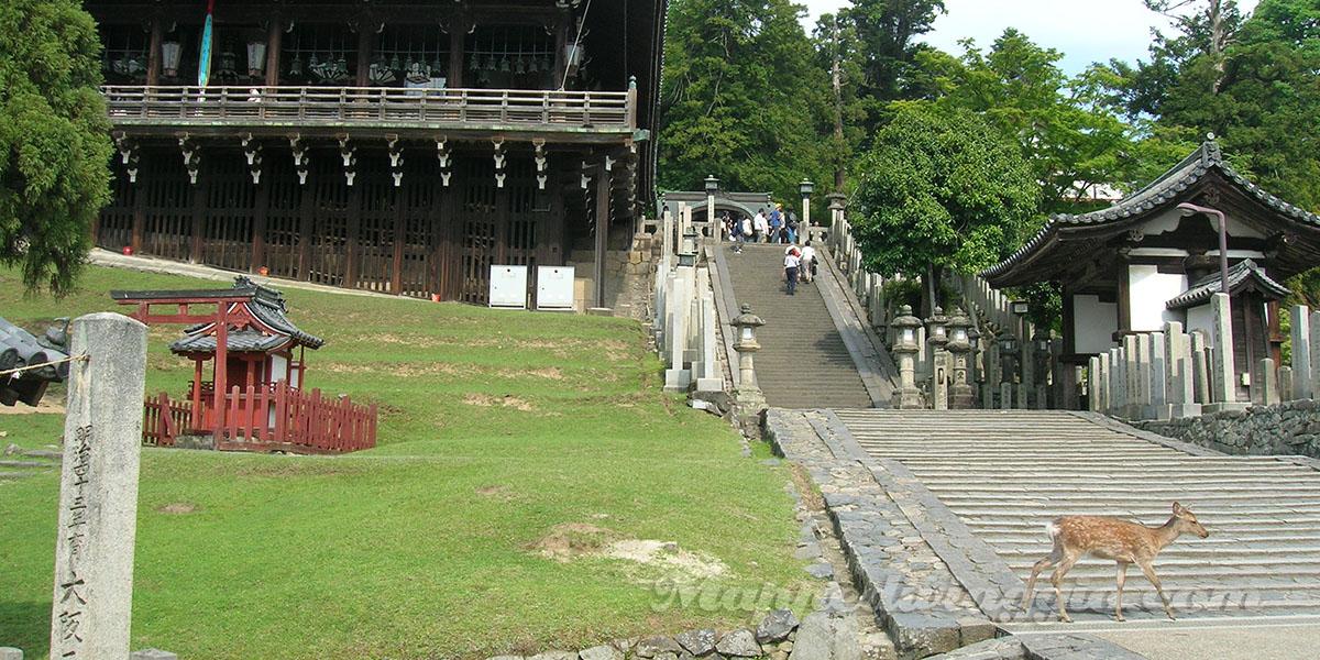 tempio-parco-nara