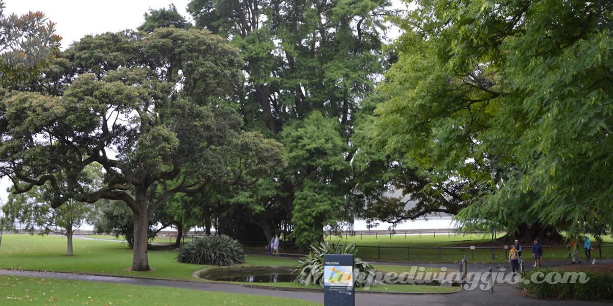 the-domain-royal-botanic-garden