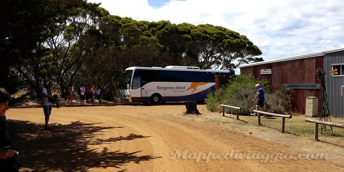 tour-kangaroo-island-sealink