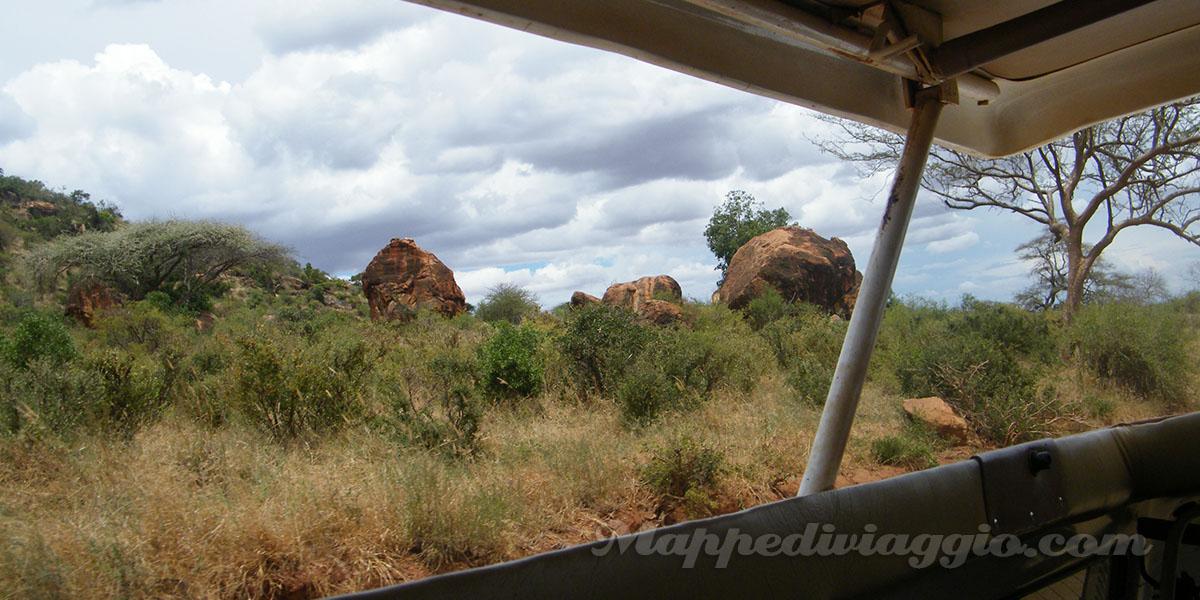 vegetazione-safari-kenya
