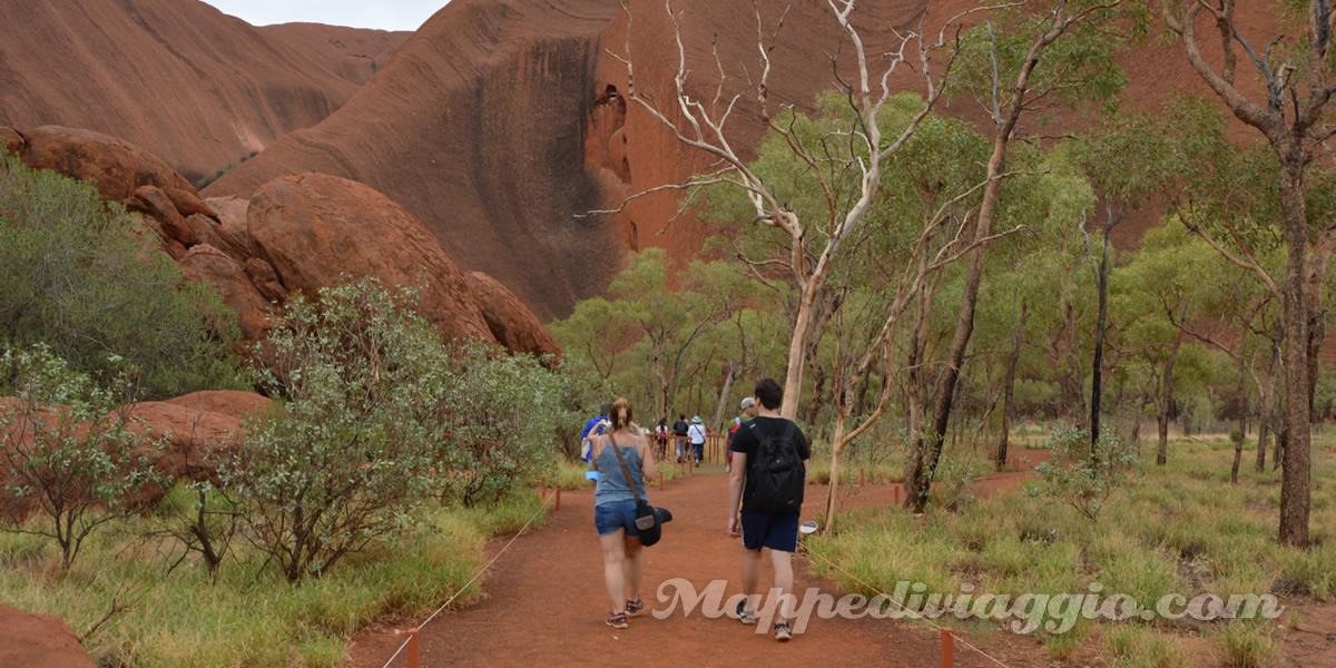 vegetazione-uluru-grotta-kulpi-mutitjulu